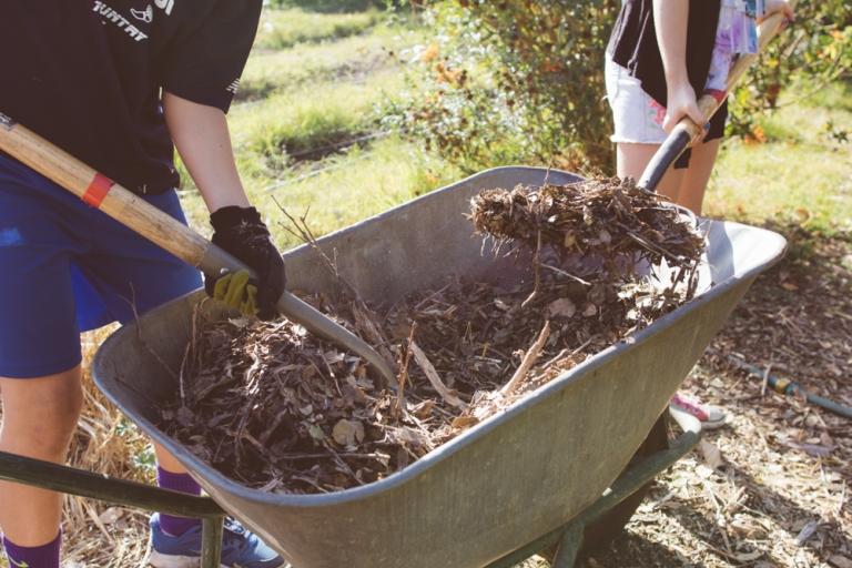2015-10-05 Edible Schoolyard -11