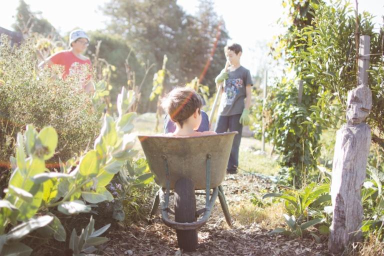 2015-10-05 Edible Schoolyard -17