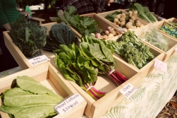 2013-05-25 Decatur Farmers Market 002
